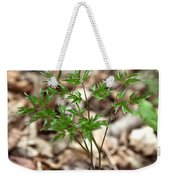 Black Cohosh Weekender Tote Bag
