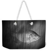 Black Crappie Or Speckled Bass Among The Reeds Weekender Tote Bag