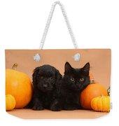 Black Kitten & Puppy With Pumpkins Weekender Tote Bag