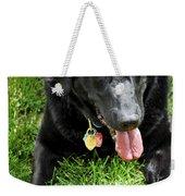 Black Lab Dog With A Ball Weekender Tote Bag by Elena Elisseeva