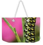 Black Swallowtail Caterpillar On Garden Weekender Tote Bag