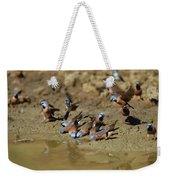 Black-throated Finches At Waterhole Weekender Tote Bag