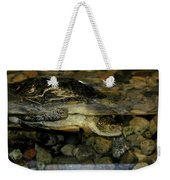 Blandings Turtle Weekender Tote Bag
