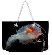 Blind Lobster Weekender Tote Bag