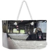 Blonde And Black Dogs Weekender Tote Bag