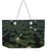Blooming Water Lilies Fill A Body Weekender Tote Bag