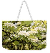 Blossoming Hawthorn Tree Weekender Tote Bag