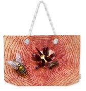Blowflies On Stapelia Weekender Tote Bag