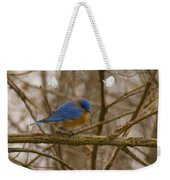 Blue Bird Perched On Willow Weekender Tote Bag