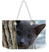 Russian Blue,cat  Weekender Tote Bag