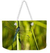 Blue Dragonfly 1 Weekender Tote Bag