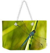 Blue Dragonfly 10 Weekender Tote Bag