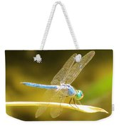 Blue Dragonfly Weekender Tote Bag