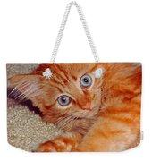 Blue-eyed Kitty Weekender Tote Bag