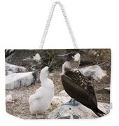 Blue-footed Booby Mother And Chick Weekender Tote Bag