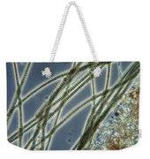 Blue-green Algae Weekender Tote Bag