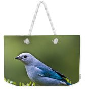 Blue-grey-tanager Weekender Tote Bag
