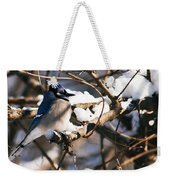 Blue Jay Staying Warm Weekender Tote Bag