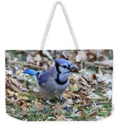 Blue Jay With A Piece Of Corn In Its Mouth Weekender Tote Bag