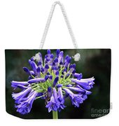 Blue Lily Of The Nile Weekender Tote Bag