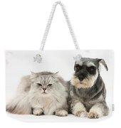 Blue-point Kitten & Miniature Schnauzer Weekender Tote Bag