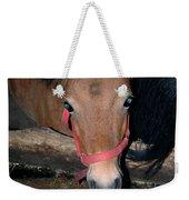 Blue Pony Eyes Weekender Tote Bag