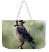 Bluejay - Bird Weekender Tote Bag