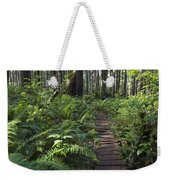Boardwalk Winds Through The Forest Weekender Tote Bag