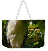 Blackcrowned Night Heron Weekender Tote Bag