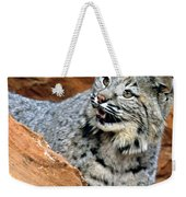 Bobcat With A Smile Weekender Tote Bag