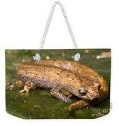Bolitoglossine Salamander Weekender Tote Bag
