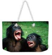 Bonobo Pan Paniscus Juvenile Pair Weekender Tote Bag