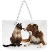 Border Collie & Siamese Cat Weekender Tote Bag