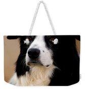 Border Collie Dog Weekender Tote Bag