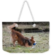 Border Collie Playing With Ball Weekender Tote Bag