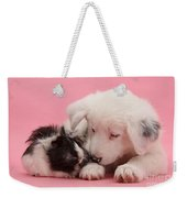 Border Collie Pup And Guinea Pig Weekender Tote Bag