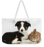Border Collie Pup And Netherland-cross Weekender Tote Bag
