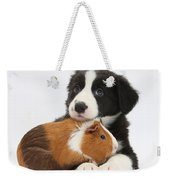 Border Collie Pup And Tricolor Guinea Weekender Tote Bag