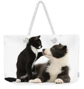 Border Collie Pup And Tuxedo Kitten Weekender Tote Bag