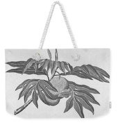 Botany: Breadfruit Tree Weekender Tote Bag