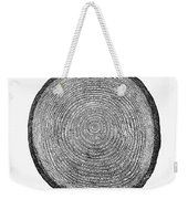 Botany:  Fir Tree Trunk Weekender Tote Bag