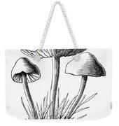 Botany: Mushroom Weekender Tote Bag