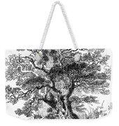 Botany: Oak Tree Weekender Tote Bag