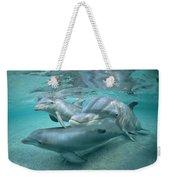 Bottlenose Dolphin Underwater Trio Weekender Tote Bag