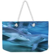 Bottlenose Dolphins Swimming Hawaii Weekender Tote Bag