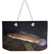Bowfin Amia Calva Swims The Murky Weekender Tote Bag