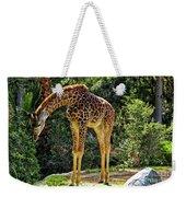 Bowing Giraffe Weekender Tote Bag by Mariola Bitner