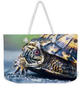 Box Turtle 1 Weekender Tote Bag