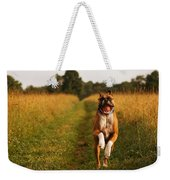Boxer Dog Running Happily Through Field Weekender Tote Bag by Stephanie McDowell