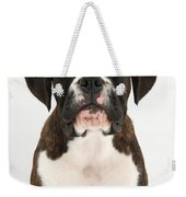 Boxer Pup Weekender Tote Bag by Mark Taylor